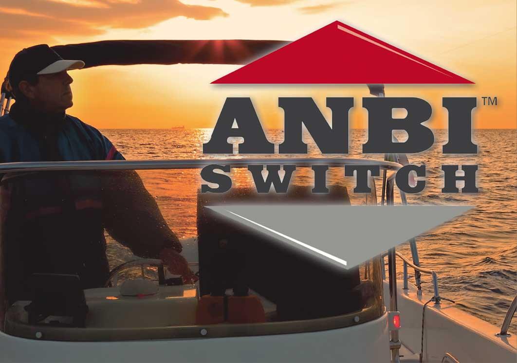 ANBI Switch