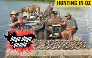 Hogs, Dogs & Quads